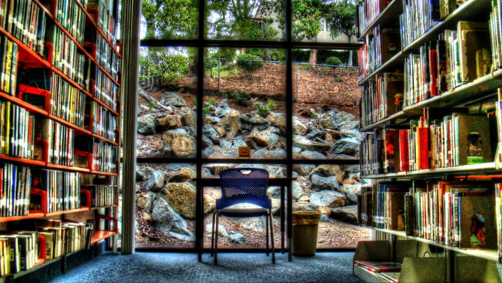 """Window Seat"" is a photo by San Carlos Branch Library clerk Tim Mountain. (Courtesy of SCFOL)"