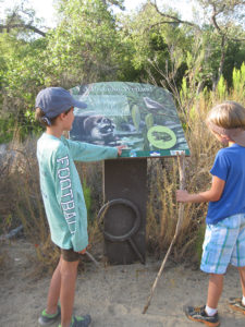 Young Hikers Contemplate Pacific Tree Frogweb